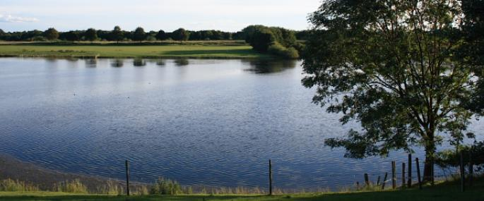 Bolton-on-Swale Lake Nature Reserve - Mick Garratt