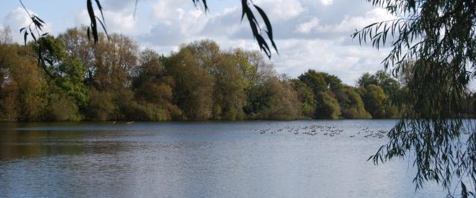 Whelford Pools - Gloucestershire WT