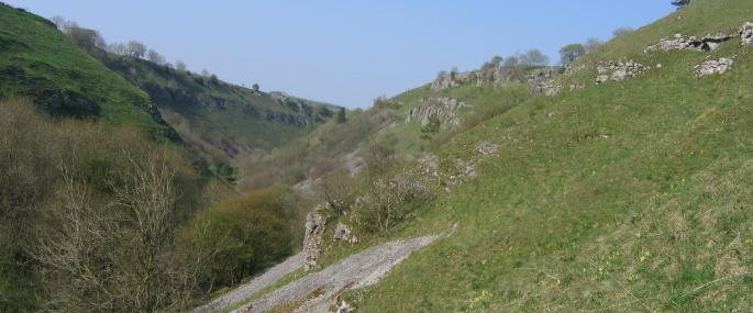 Deep Dale and Topley Pike  - Derbyshire Wildlife Trust