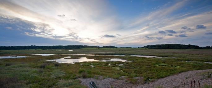 Dingle Marshes - Suffolk Wildlife Trust