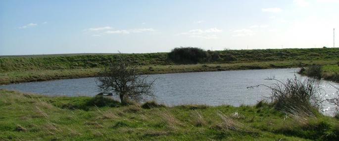 Fobbing Marsh Nature Reserve - Essex Wildlife Trust - Essex Wildlife Trust