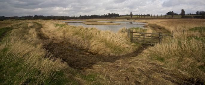 Levington Lagoon - Suffolk Wildlife Trust