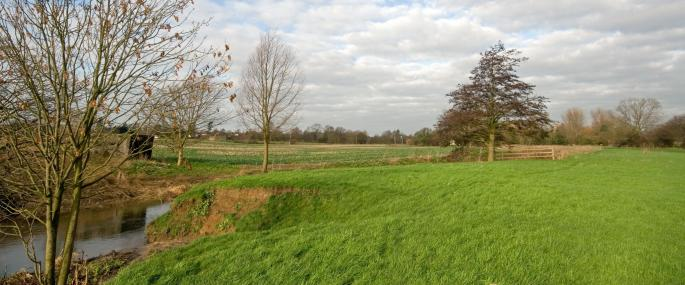 Little Waltham Meadows Nature Reserve - Essex Wildlife Trust - Essex Wildlife Trust