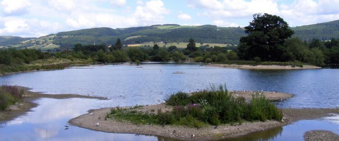 Llyn Coed y Dinas Montgomeryshire Wildlife Trust Nature Reserve - © MWT