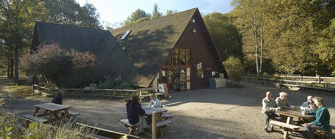Thorndon Countryside Centre - Essex Wildlife Trust -