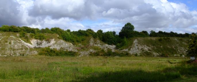 Wharram Quarry Nature Reserve - Laura Popely