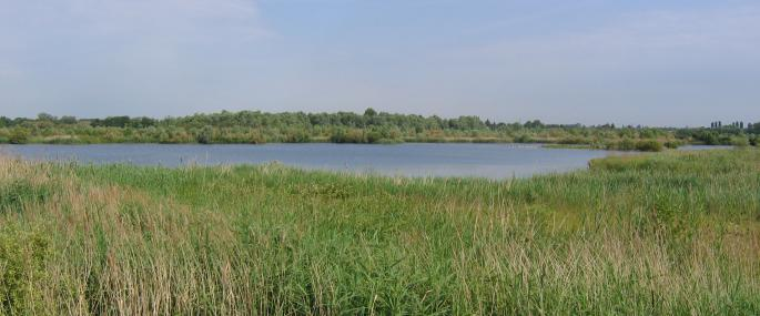 Willington Gravel Pits - Derbyshire Wildlife Trust