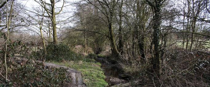 Priory Fields - WKWT
