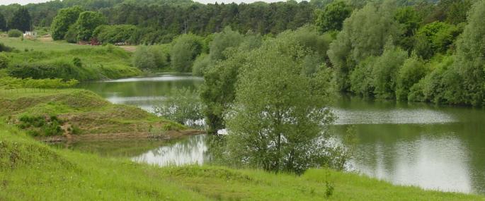 Stanton's Pit - Lilianna Witkowska-Wawer