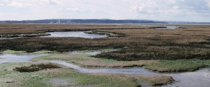 Lymington and Keyhaven Marshes Nature Reserve. -