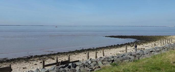 View across Humber towards Humber Bridge from Paull Holme Strays  - Credit Lizzie Dealey