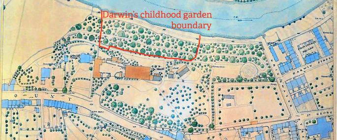 Darwin's childhood garden map -