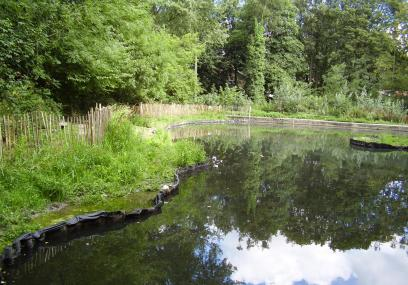 Crabtree ponds sheffield wildlife trust for Local pond stores