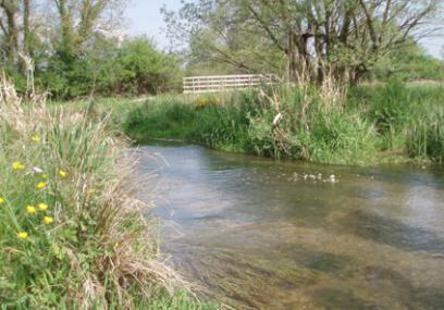 Greystones Farm - Gloucestershire WT