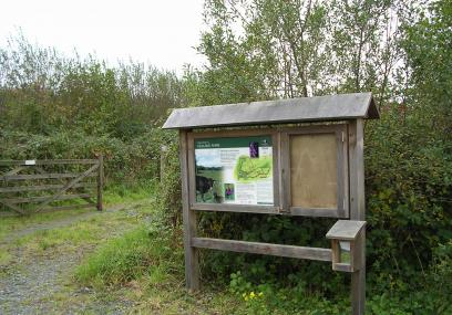 Vealand Farm - Devon Wildlife Trust