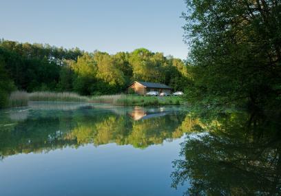 Swanwick Lakes Nature Reserve - © Ian Cameron-Reid