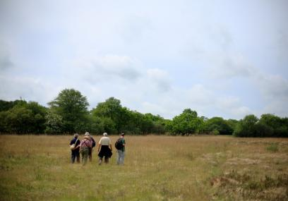 People walk across the open meadows of Dunsdon National Nature Reserve - David Chamberlain