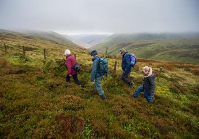 Mynydd Ffoesidoes Nature Reserve - Matthew Roberts
