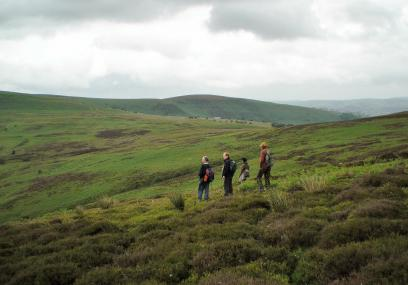 Cnwch Bank Nature Reserve - Radnorshire Wildlife Trust