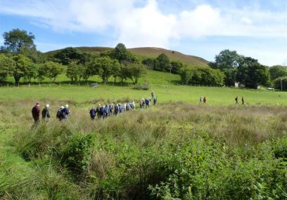 Tylcau Hill (Floss Brand) Nature Reserve - Radnorshire Wildlife Trust