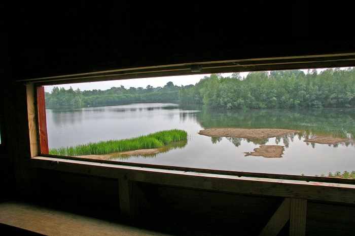 View from the hide at Bodenham Lake