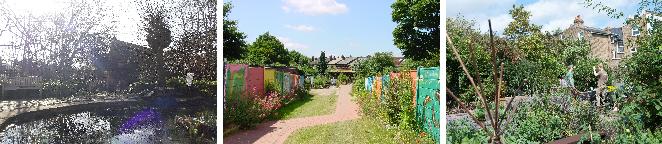 Centre for Wildlife Gardening