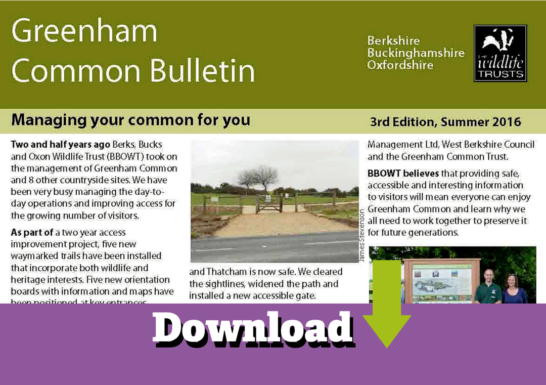 greenham-and-crookham-bulletin