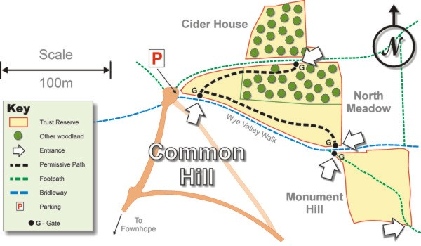Common Hill map